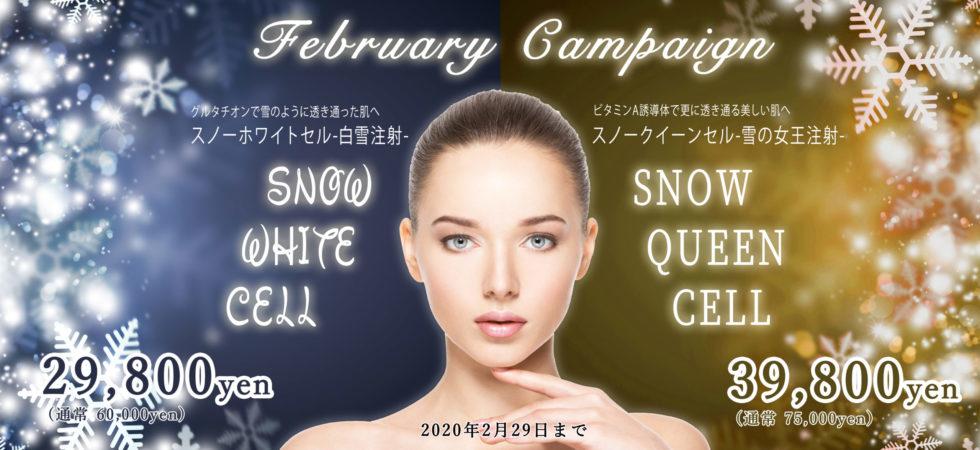 2月のキャンペーン【水光注射】